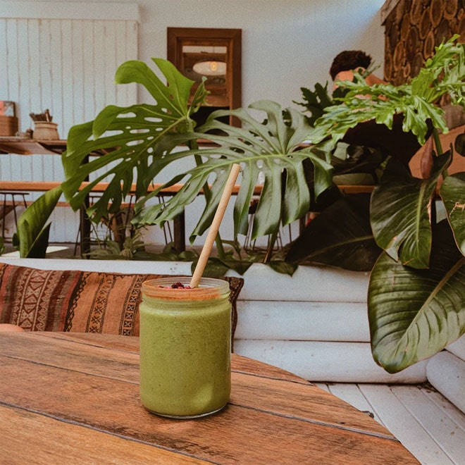 An home interior with a nice green indoor plant