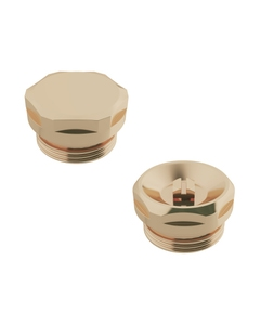 Trade Direct Bleed Valve and Blanking Plug Pack, Polished Brass